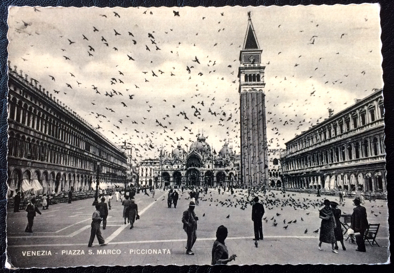 Project Postcard June 1952 Venice Piazza San Marco