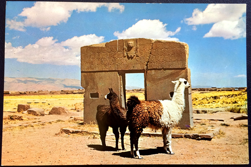Project Postcard July 1977 Llama in Bolivia front