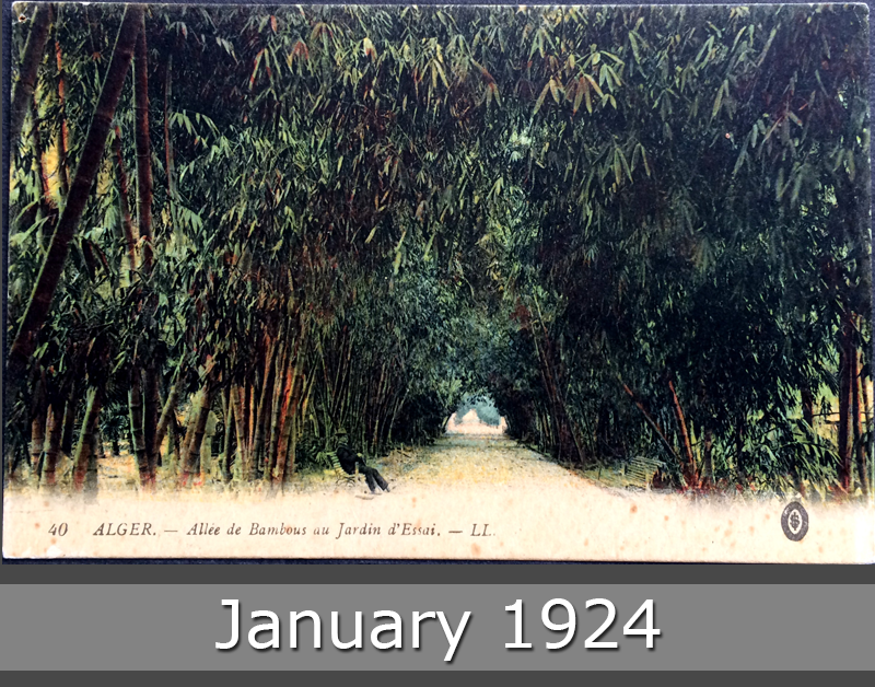 Project Postcard January 1924 - Algiers Bamboo avenue test garden front